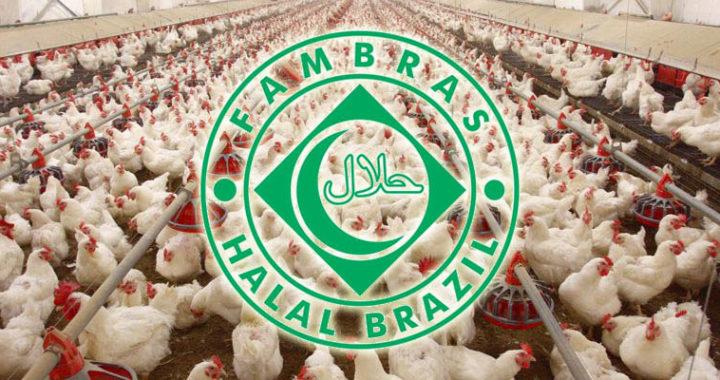 Бразилия с начала года экспортировала около миллиона тонн халяльной курицы